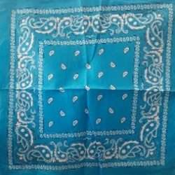 "Paisley Bandana Light Blue 21""x21"""