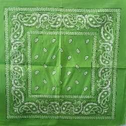 "Paisley Bandana Light Green 21""x22"""